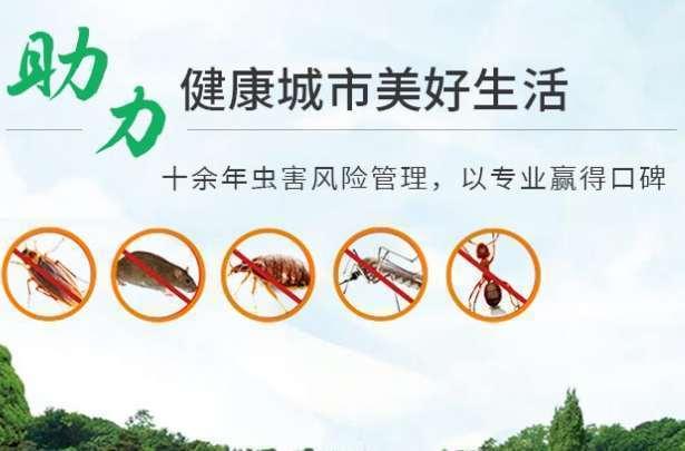 洛阳有效灭蟑螂,洛阳室内灭蟑螂,洛阳大型灭蟑螂